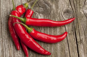 Światowy Dzień Papryczki chili – 3 lipca - Papryka Przytycka