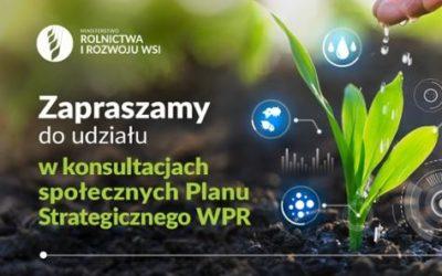 Ruszyły konsultacje projektu Planu Strategicznego dla Wspólnej Polityki Rolnej