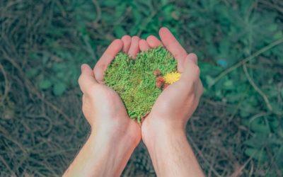 Zapewnienie przestrzegania prawa ochrony środowiska na obszarach wiejskich – przewodnik